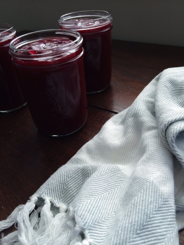 """finished product: cranberry """"jelly"""" sauce"""